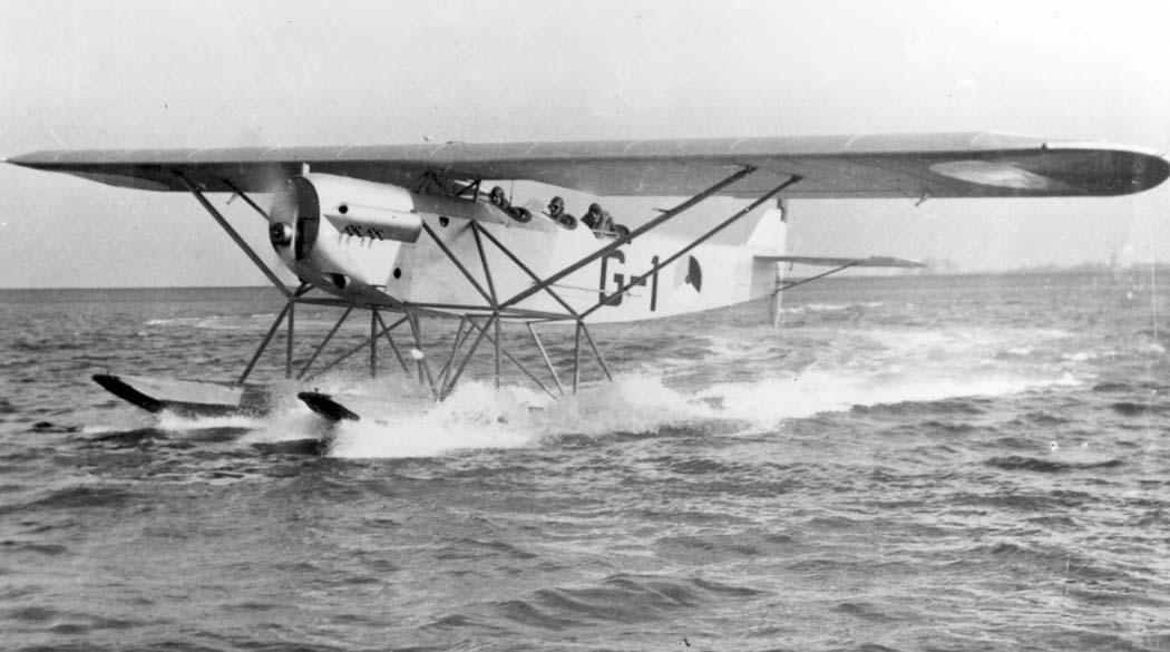 Fokker C.VIII-w