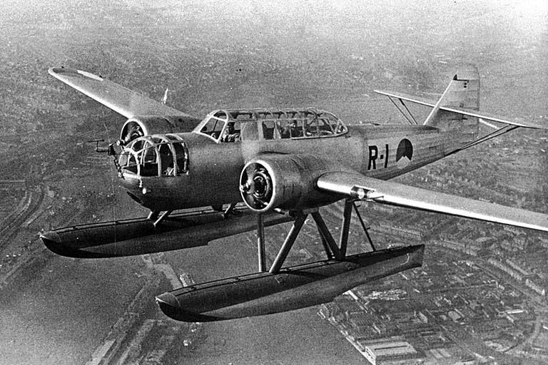 Fokker T.VIII-w