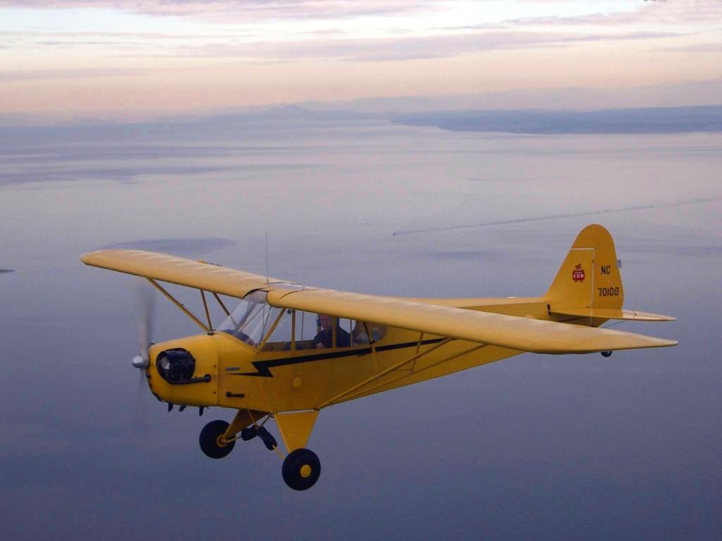 """Piper J-3 """"Cub"""